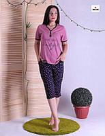 Пижама женская футболка с бриджами летняя для беременных и кормящих р.44-54