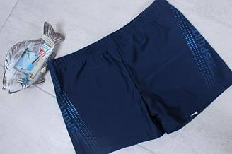 Пляжные плавки-шорты мужские, Z.Five (размер 64)