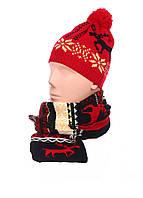 Зимняя шапка и шарф AL7970, фото 1