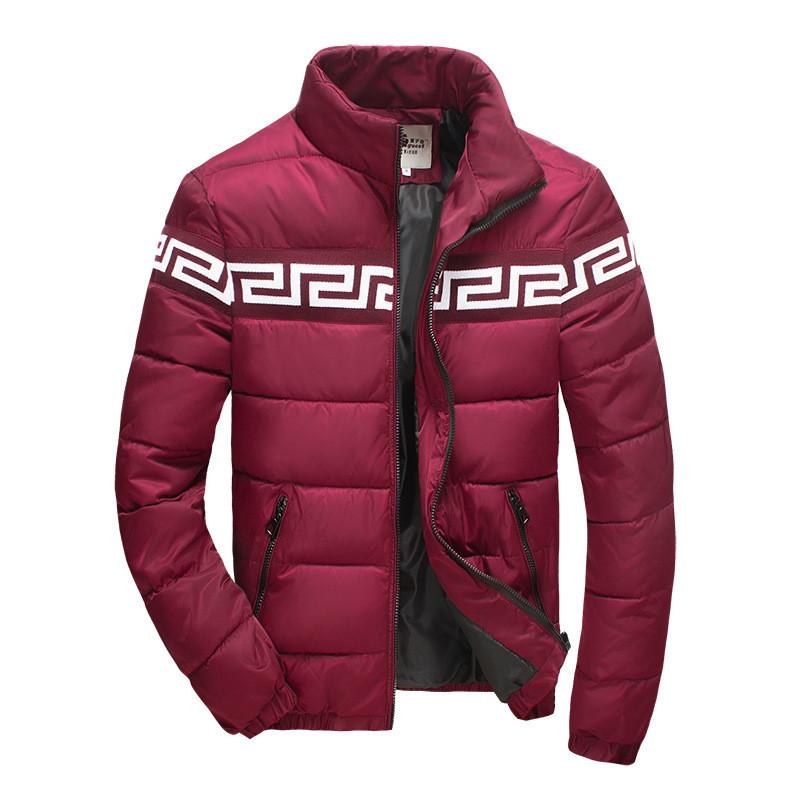 Куртка  мужская AL-6610-91
