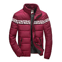 Куртка  мужская AL-6610-91, фото 1