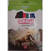Олівці кольорові 18 кол.  KN-55603 (8/160) (КНОПКА)  149