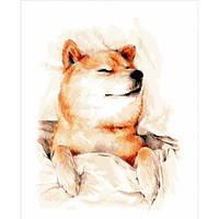 Набор для рисования Brushme Картина по номерам BGT66013 Сонный Акита-ину 40х50 см