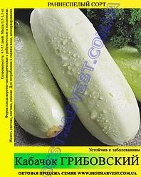 Насіння кабачка «Грибовський» 100 г