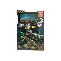Набор 3D скелет динозавра