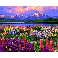 Картина по номерам Babylon VPS1253 Поле из полевых цветов 50х65см рисование по  номерам Пейзаж, природа