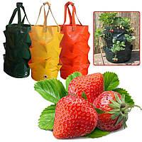 Мешки для выращивания овощей и фруктов