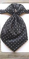 Черный галстук-пластрон с платком в карман в мелкий горошек