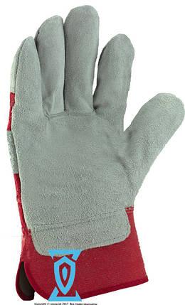 Перчатки рабочие замш цельная ладонь, фото 2