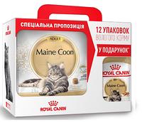 АКЦИЯ! Royal Canin Maine Coon Adult сухой корм для кошек от 1 года 4КГ + 12 паучей Maine Coon в подарок!