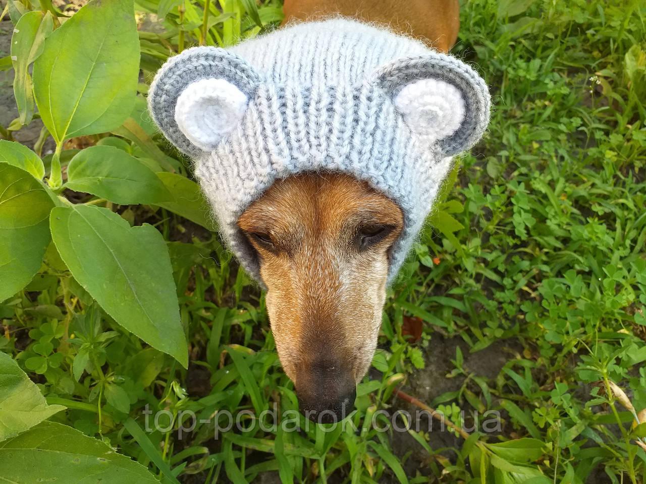 Снуд-шапка для собаки Мишка ручной работы,одежда для собаки ручной работы