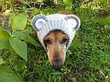 Снуд-шапка для собаки Мишка ручной работы,одежда для собаки ручной работы, фото 2