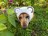Снуд-шапка для собаки Мишка ручной работы,одежда для собаки ручной работы, фото 6
