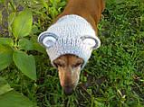 Снуд-шапка для собаки Мишка ручной работы,одежда для собаки ручной работы, фото 5