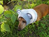 Снуд-шапка для собаки Мишка ручной работы,одежда для собаки ручной работы, фото 7
