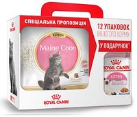 АКЦИЯ! Сухой корм Royal Canin Kitten Maine Coon для котят, 4КГ + 12 паучей Kitten в подарок!