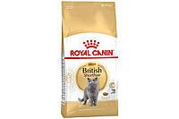 Сухой корм Royal Canin British Shorthair Adult для британских короткошерстных кошек,10 кг(БЕСПЛАТНАЯ ДОСТАВКА)