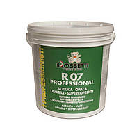 Краска для внутренних работ R07 PROFESSIONAL (15 л) Rossetti