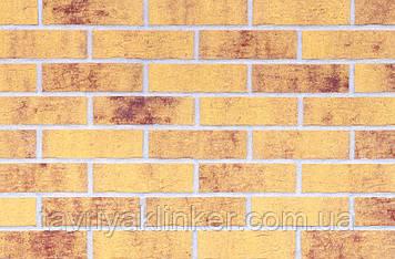 Клинкерная фасадная плитка Amber sea (HF13), 240x71x10 мм