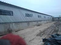 Штора ПВХ с прозрачными окнами