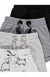 Літні трикотажні шорти для хлопчиків Gеоrge 9-12м, фото 2