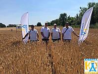 """Звіт по проведеному семінару :""""Нові сорти озимої пшениці """"Saaten Union"""""""""""