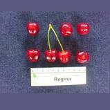 Саженцы черешни сорт Regina, фото 4