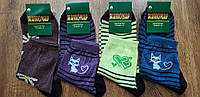 """Шкарпетки жіночі демісезонні хб """"Житомир"""" 25(35-40), фото 1"""