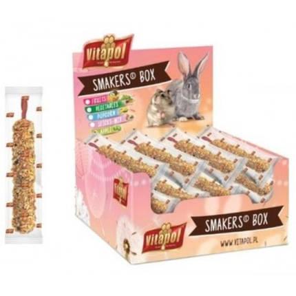 Колба Vitapol Smakers Box для шиншилл, со вкусом фруктов и ореха, упаковка 12 шт, фото 2