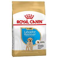 Royal Canin Labrador Retriever Puppy (Роял Канин) - сухой кори для щенков породы Лабрадор Ретривер 12 кг