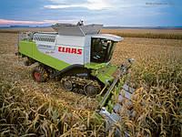 Комбайны  зерноуборочные новые и б/у  CLAAS Lexion
