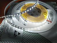 Светодиодная лента премиум   13.5 ватта белого свечения, не герметичная, 1м, фото 1