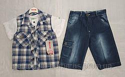Детский летний комплект для мальчика футболка-рубашка в синюю клетку и бриджи (Petito Club, Турция)