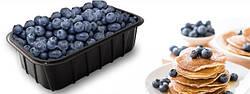 Судки, тара, пинетки для ягод, упаковка блистерная для пищевых продуктов, мини-теплица