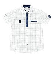 Рубашка для мальчика (6-10 лет) Турция купить от склада оптом 7 км
