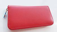 Жіночий шкіряний гаманець Balisa 3-924 червоний Шкіряні гаманці оптом Одеса 7 км, фото 3