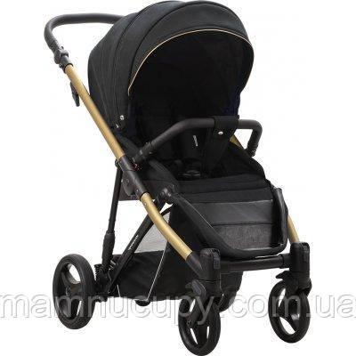 Дитяча прогулянкова коляска Bebetto Rainbow Gold 01