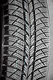 155/70R13 WQ-101 Rosava зимние шины, фото 2