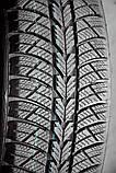 205/65 R15 WQ-101 Rosava зимние шины, фото 2