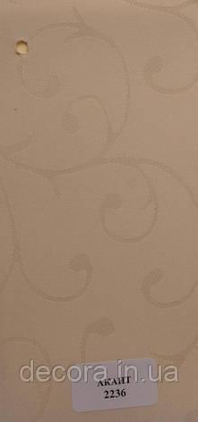 Рулонні штори Міні Akant 2236 40см., фото 2