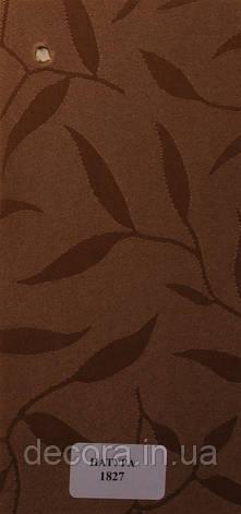 Рулонні штори Міні Натура 1827 40см., фото 2