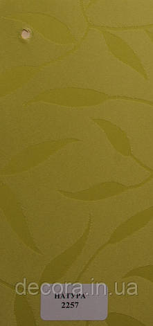 Рулонні штори Міні Натура 2257 40см., фото 2
