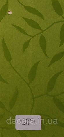 Рулонні штори Міні Натура 2258 40см., фото 2