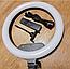 Кольцевая светодиодная лампа LED AL-360 (диаметр 36 cм) с пультом, фото 2