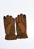 Женские перчатки  7875  Universal коричневый, фото 2