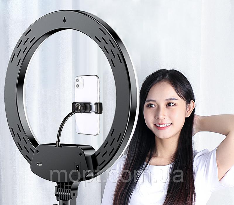 Кольцевая светодиодная лампа с пультом - диаметр 33 см + металлический штатив 200 см для визажиста блоггера