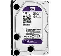 HDD 1Tb WD Purple