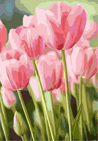 Картина за номерами Ідейка Весняні тюльпани 35*50 см арт.KH2069, фото 2