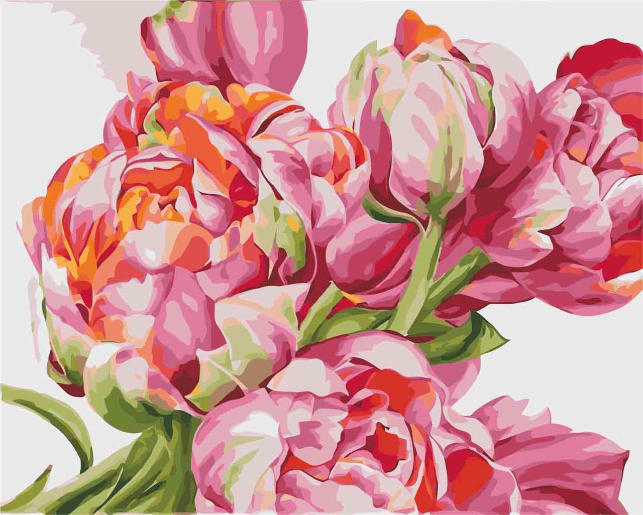 Картина за номерами Ідейка Коралові тюльпани 40*50 см арт.KH2081