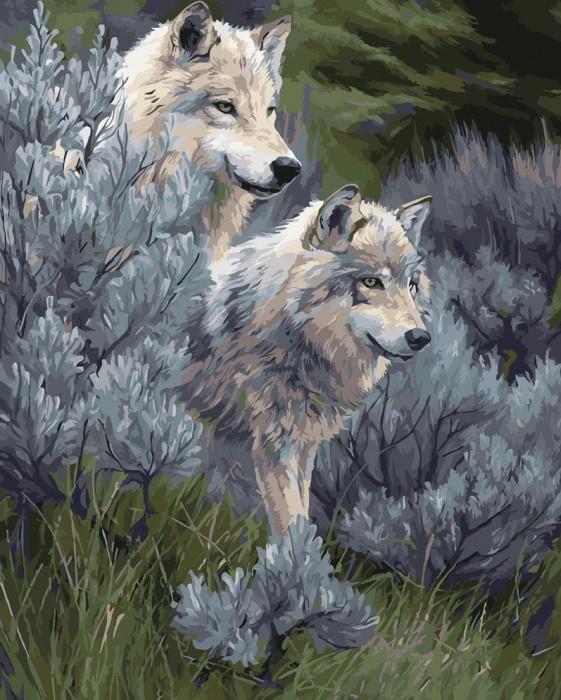 Картина по номерам Идейка Волчья пара 40*50 см (в коробке) арт.KH2435